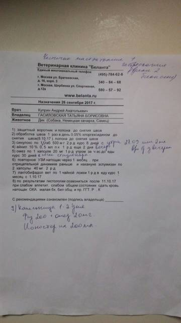 http://s5.uploads.ru/t/bVh1m.jpg