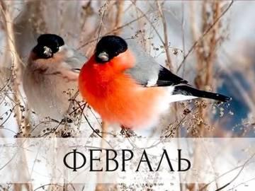 http://s5.uploads.ru/t/c13q0.jpg