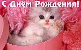 http://s5.uploads.ru/t/c29U6.jpg