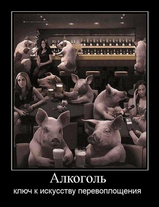 http://s5.uploads.ru/t/cXtgM.jpg