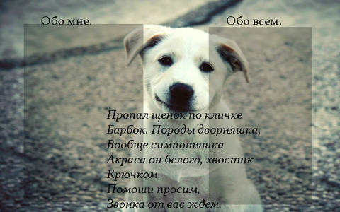 http://s5.uploads.ru/t/caFPY.jpg
