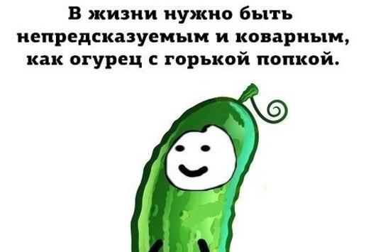 http://s5.uploads.ru/t/d2pvP.jpg