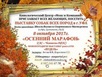 http://s5.uploads.ru/t/eKZL0.jpg