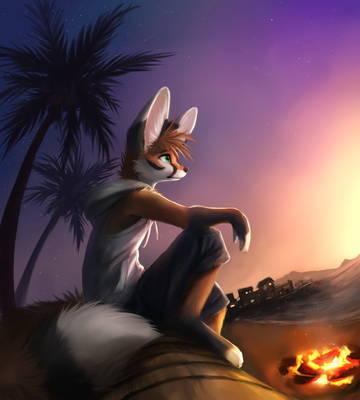 Каждую ночь можно на берегу разжигать костёр и наблюдать красивые закаты. Ветер бует приятно ерошить шерстку, а ты можешь спокойно выпить кофе или коктейль, пожарить шашлык или зефир, сидя на сваленной пальме.