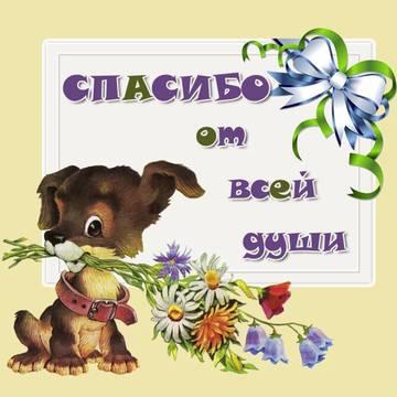 http://s5.uploads.ru/t/gmZJc.jpg