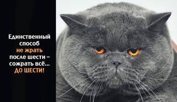 http://s5.uploads.ru/t/hDnZ0.jpg