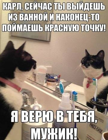http://s5.uploads.ru/t/i5ful.jpg