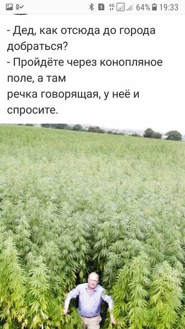 http://s5.uploads.ru/t/j2HnZ.jpg