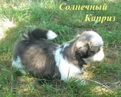 http://s5.uploads.ru/t/jUtIN.jpg