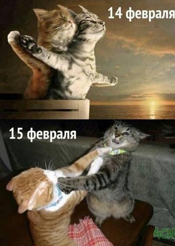 http://s5.uploads.ru/t/jl9bB.jpg