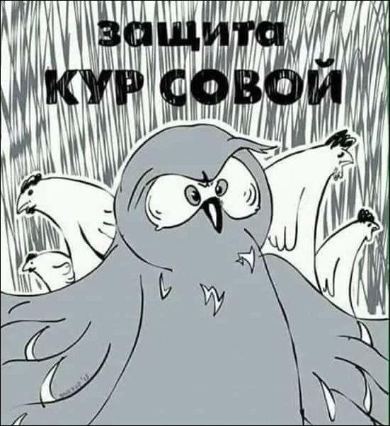 http://s5.uploads.ru/t/kAyS0.jpg