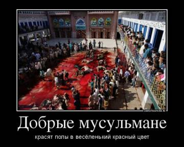 http://s5.uploads.ru/t/kSpyP.jpg