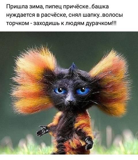 http://s5.uploads.ru/t/kms4Y.jpg