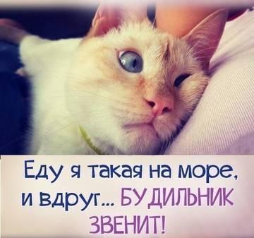 http://s5.uploads.ru/t/nQ2OV.jpg