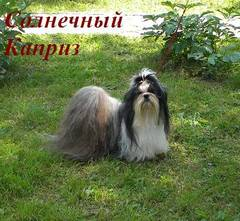 http://s5.uploads.ru/t/p8vig.jpg