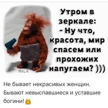 http://s5.uploads.ru/t/pT6KQ.jpg