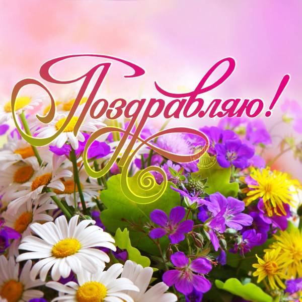 http://s5.uploads.ru/t/q1tZ2.jpg