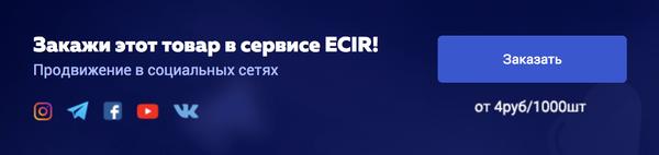 ECIR.RU - новый сервис для раскрутки ВСЕХ социальных сетей + Франшиза