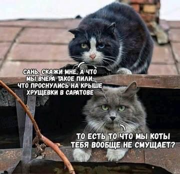 http://s5.uploads.ru/t/r6XeT.jpg