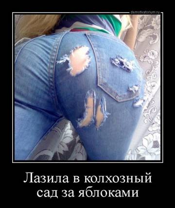 http://s5.uploads.ru/t/sSkaF.jpg