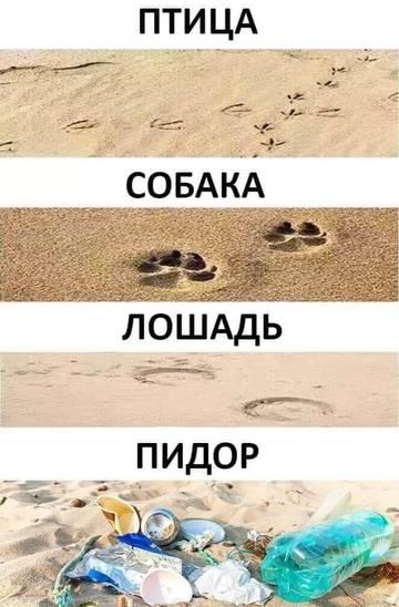 http://s5.uploads.ru/t/sSyP0.jpg