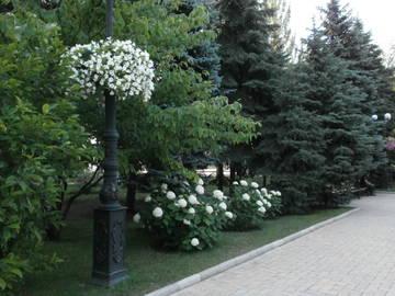 http://s5.uploads.ru/t/sgKiG.jpg