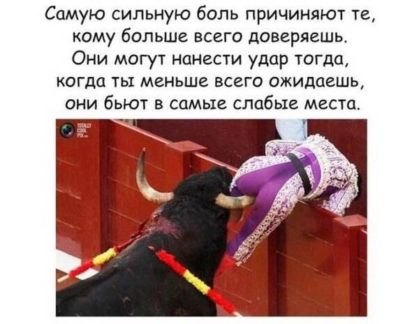 http://s5.uploads.ru/t/t2s96.jpg