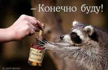 http://s5.uploads.ru/t/tDc9u.jpg