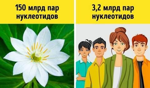 http://s5.uploads.ru/t/tJaNb.jpg