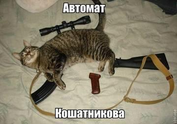 http://s5.uploads.ru/t/tp0Ky.jpg