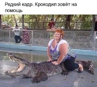 http://s5.uploads.ru/t/uGrMb.jpg