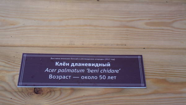 http://s5.uploads.ru/t/vlse4.jpg