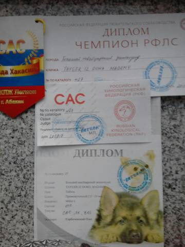 http://s5.uploads.ru/t/wHXDP.jpg