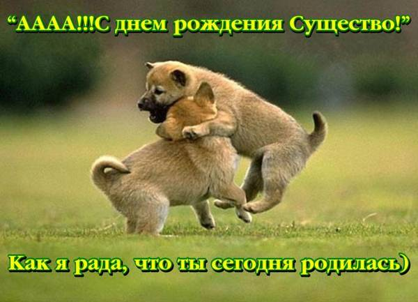 http://s5.uploads.ru/t/x69vZ.jpg