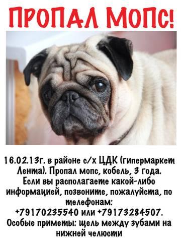 http://s5.uploads.ru/t/xLkeu.jpg
