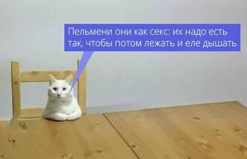 http://s5.uploads.ru/t/xXb79.jpg