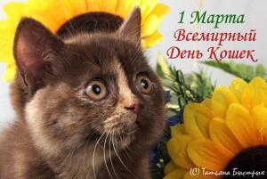 http://s5.uploads.ru/t/xZguJ.jpg