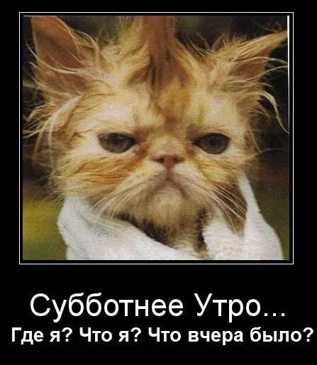 http://s5.uploads.ru/t/xzmba.jpg
