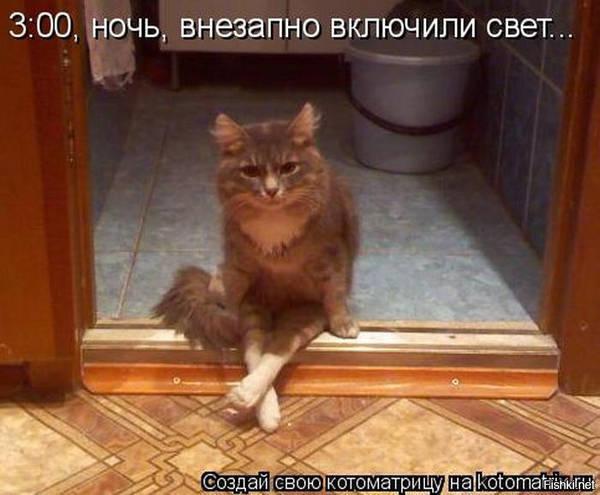 http://s5.uploads.ru/t/y197w.jpg
