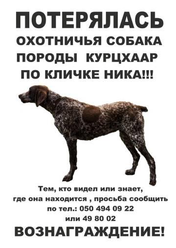 http://s5.uploads.ru/t/y4E91.jpg