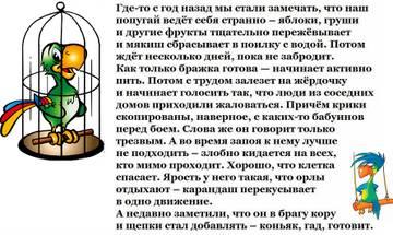 http://s5.uploads.ru/t/yLJ2G.jpg