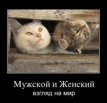 http://s5.uploads.ru/t/yc8CS.jpg
