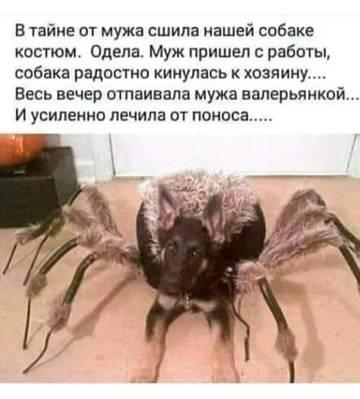 http://s5.uploads.ru/t/ynkic.jpg