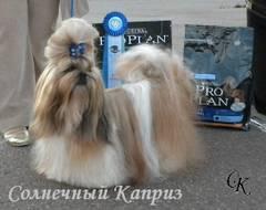 http://s5.uploads.ru/t/zDlVN.jpg