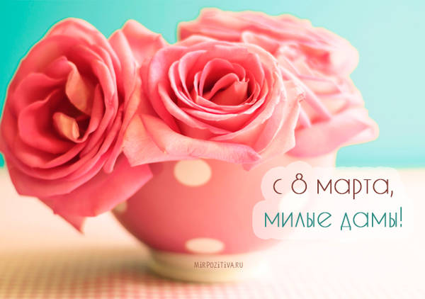 http://s5.uploads.ru/t/zhpOE.jpg