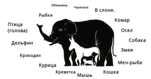 http://s5.uploads.ru/t/zmtxL.jpg