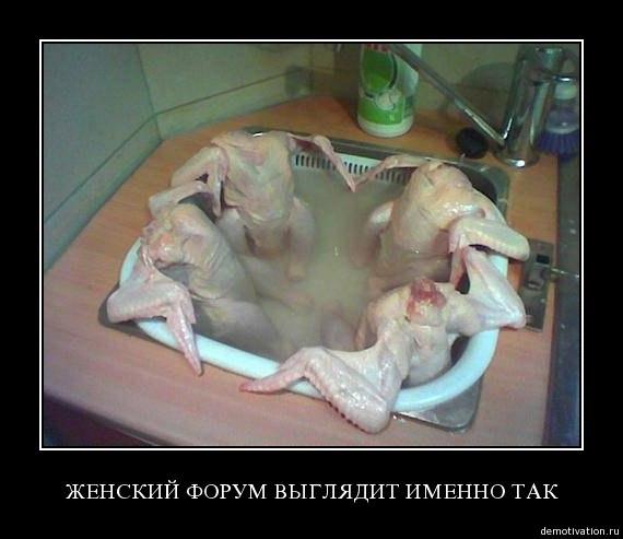 http://s5.uploads.ru/tLJgm.jpg