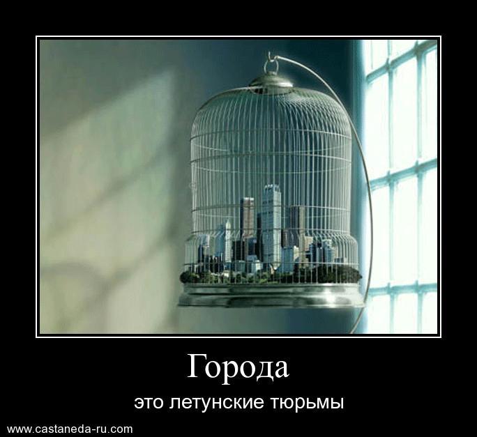 http://s5.uploads.ru/uBnbc.jpg