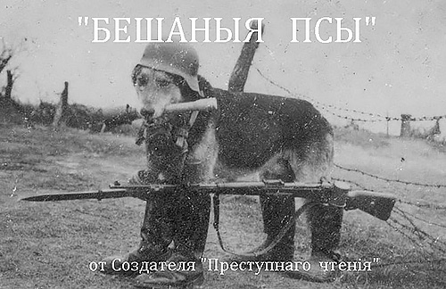 http://s5.uploads.ru/vITSW.jpg
