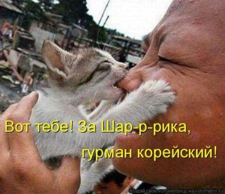 http://s5.uploads.ru/xXCbr.jpg